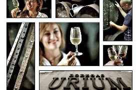 Bodegas Urium - Collage